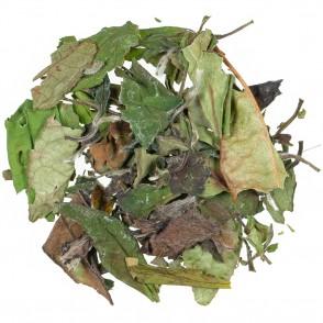 Beli čaj Pai Mu Tan Superior