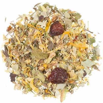 Zeliščni čaj Adijo prehlad