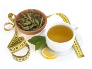 Mate čaj : Zeleni čaj - s katerim izgubimo več kilogramov?