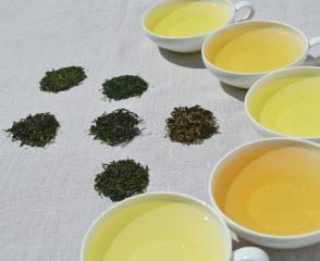 Kaj je zeleni čaj?